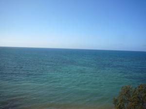 ニューカレドニア5日目(2011年11月25日)2