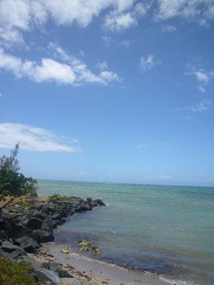 ニューカレドニア5日目(2011年11月25日)16