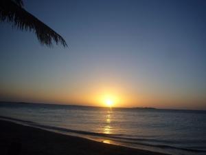 ニューカレドニア5日目(2011年11月25日)27