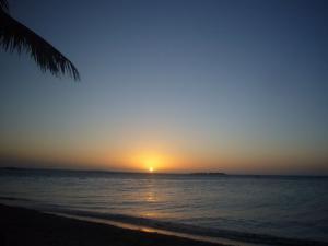 ニューカレドニア5日目(2011年11月25日)28