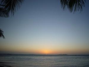 ニューカレドニア5日目(2011年11月25日)29