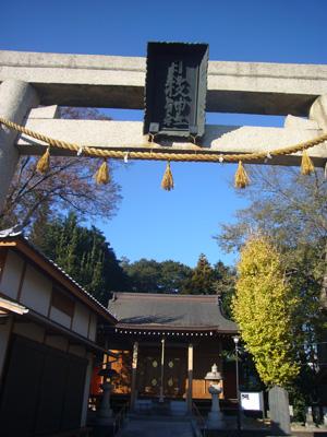 川越氷川神社 喜多院(2011年12月12日)9