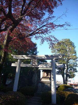 川越氷川神社 喜多院(2011年12月12日)10