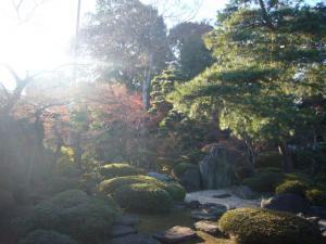 川越氷川神社 喜多院(2011年12月12日)15