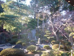 川越氷川神社 喜多院(2011年12月12日)16