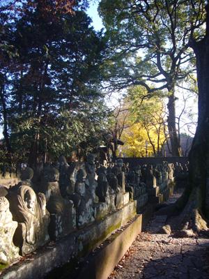 川越氷川神社 喜多院(2011年12月12日)17
