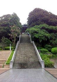 宇都宮神社(2011年8月27日)2