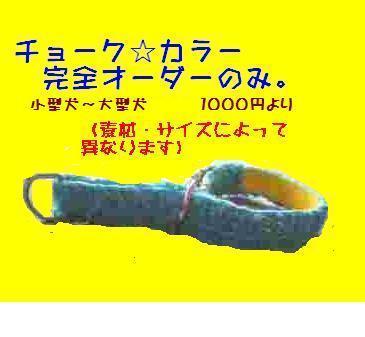 20070110071003.jpg