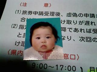 碧葉のパスポート申請