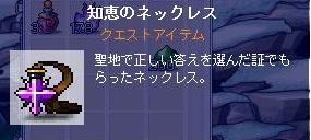 shifla9488.jpg