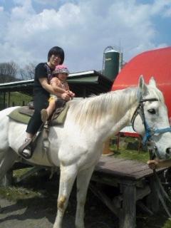大きな馬もポニーもいます