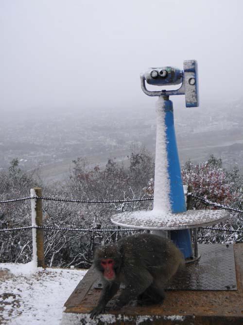 2012 0105 雪