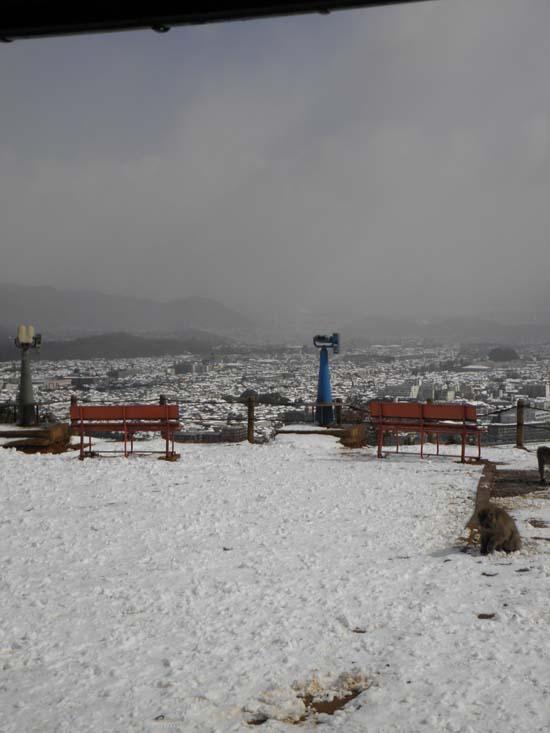 2012 0218 大雪2