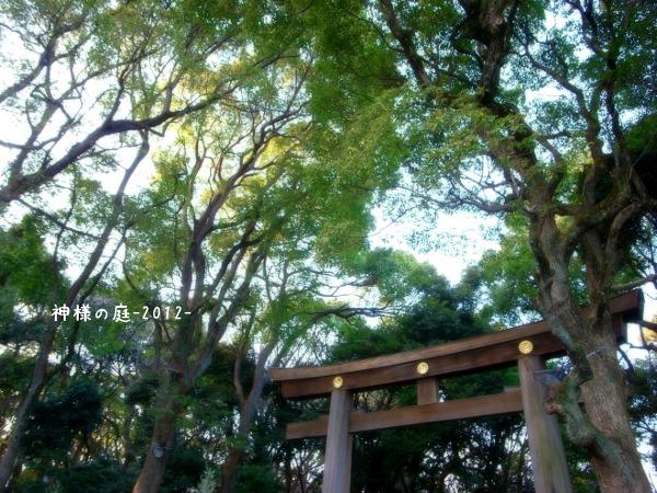 201211meijij1.jpg