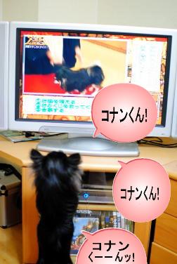 テレビ越し①