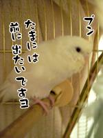 1211_3.jpg