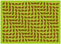 目の錯覚:ジグザグが波のように見える