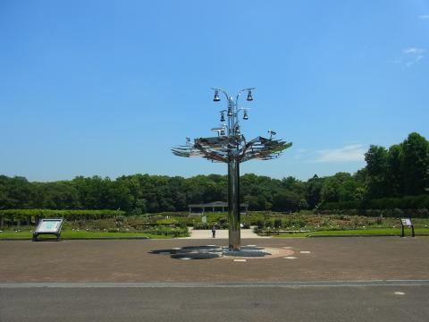 神大植物園 2