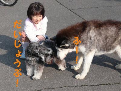 20070325214105.jpg