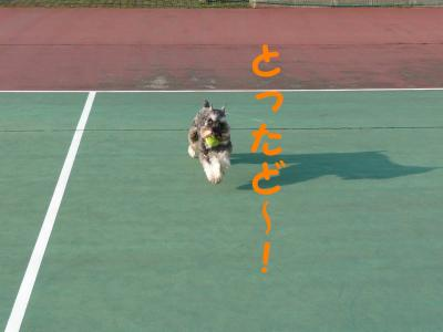 20070325214610.jpg