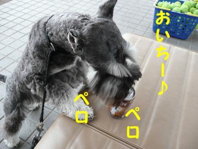 20070408194311.jpg