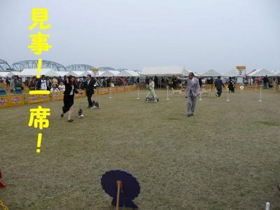 20070417211926.jpg
