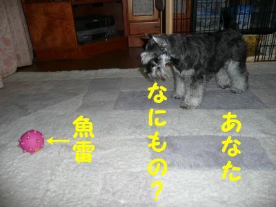 20070520211033.jpg