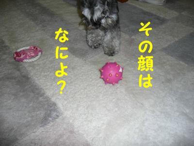 20070520211130.jpg