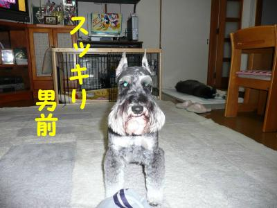 20070521211533.jpg