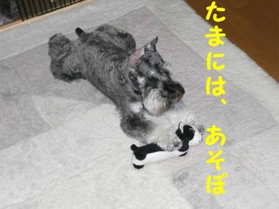 20070803201946.jpg