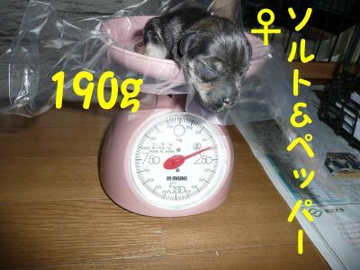 20070915224221.jpg