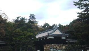 kochi_1.jpg