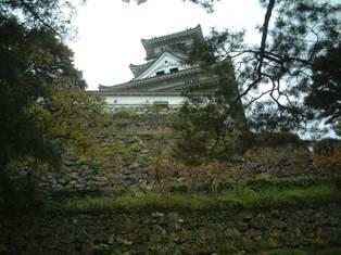kochi_4.jpg