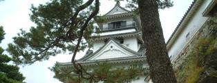 kochi_6.jpg