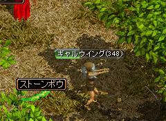 20070226111628.jpg