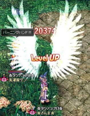 20071003094827.jpg