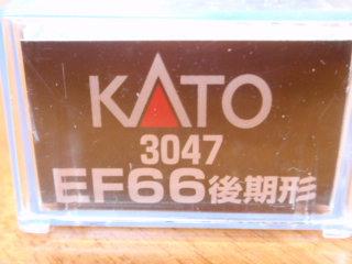 P1285498.jpg