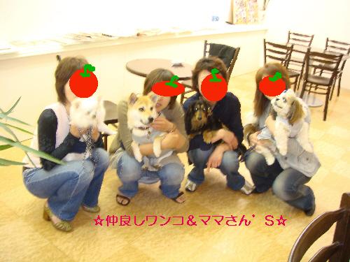 20070507210656.jpg
