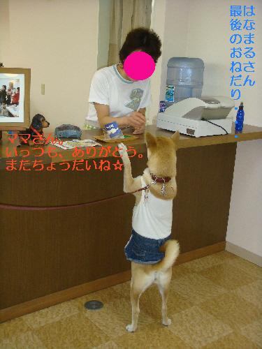 20070527210106.jpg