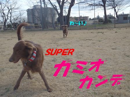 SUPER03MAR11 115
