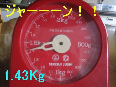 20070316111928.jpg