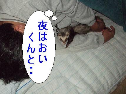20070403103517.jpg