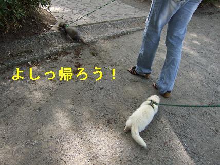 20070506011732.jpg