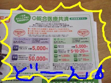 20070522202006.jpg