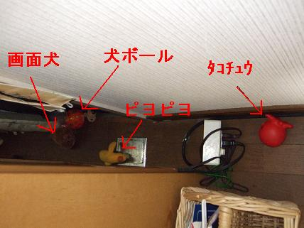 DSCF7092.jpg