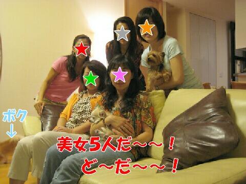 20070619103359.jpg