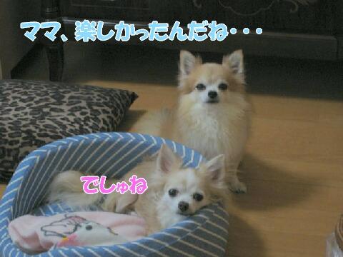 IMG_0327-1.jpg