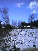 待望の雪 その2