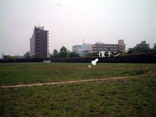 DSCF6370.jpg