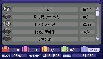 20070217_1_gofu.jpg